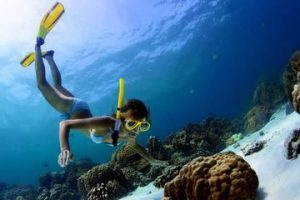 Discovery snorkeling adventure in Split Croatia
