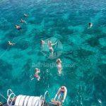 Southern Dalmatia Explorer Cruise