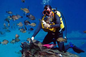 Discovery diving in Split and Trogir Croatia
