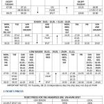 Kapetan Luka catamaran Split-Hvar-Vis schedule