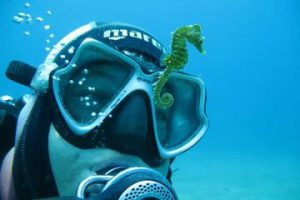 Scuba diving training in Croatia