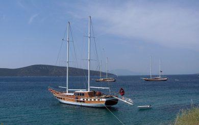 Gullet ship