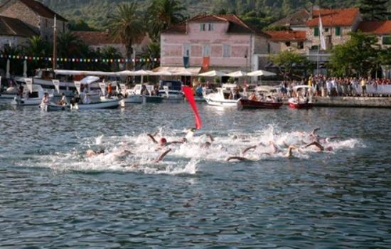 Stari Grad long distance swimming