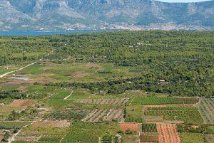 Stari Grad plain (UNESCO heritage site)