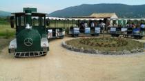 Wine tour by train