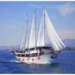 A+ Cruise Ships