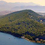 Marjan Hill forest, western part of Split peninsula