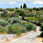 Solta nature - cycling route